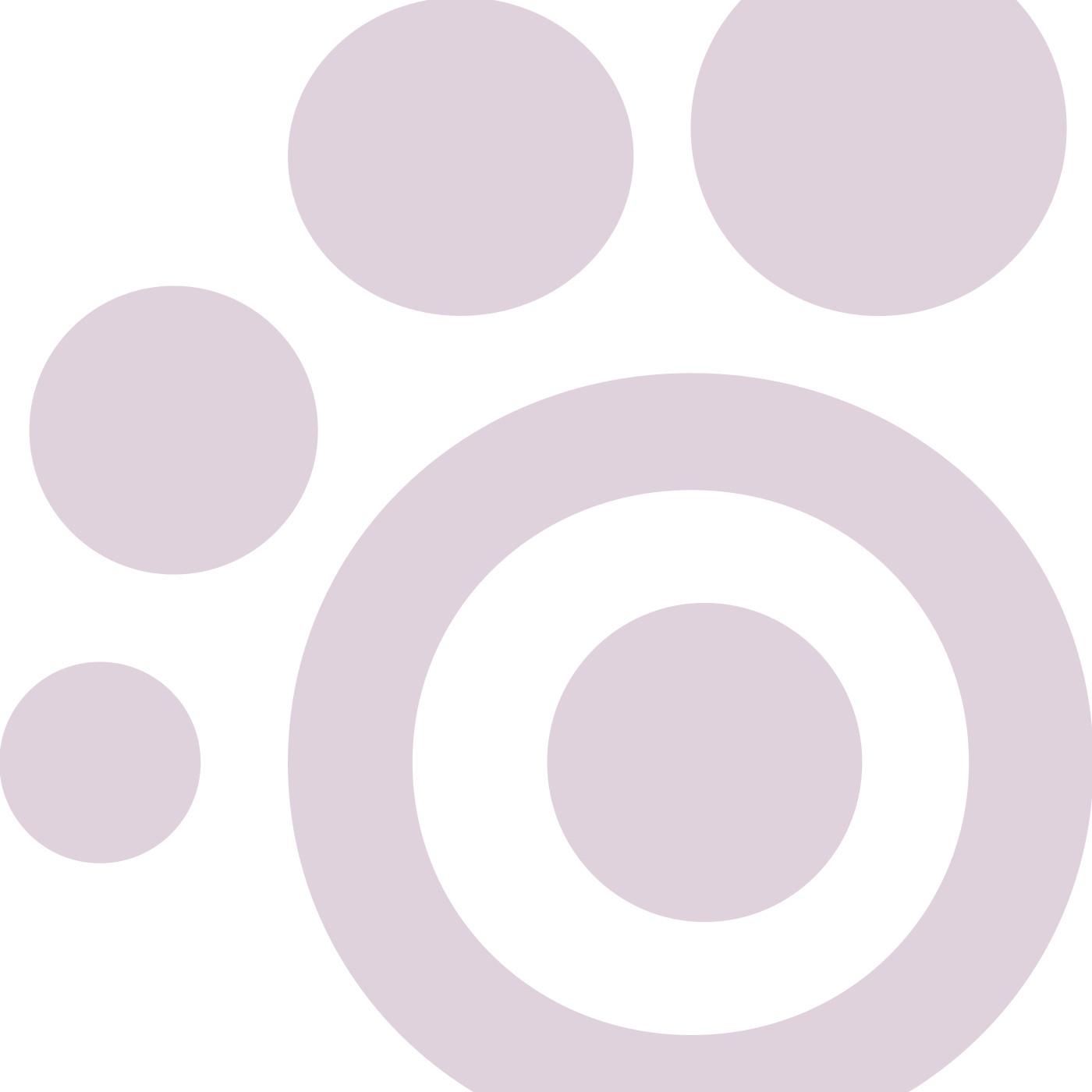 chewy bangle purple